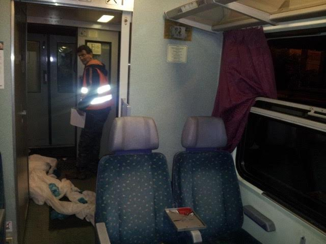 migrants-in-sweden-by-train7