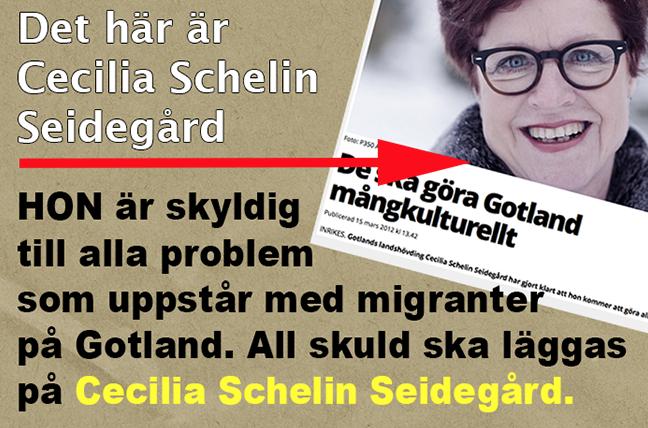 cecilia_schelin_seidegard_gotland