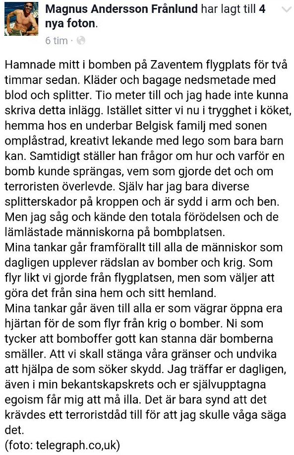 die_dumme_schweden