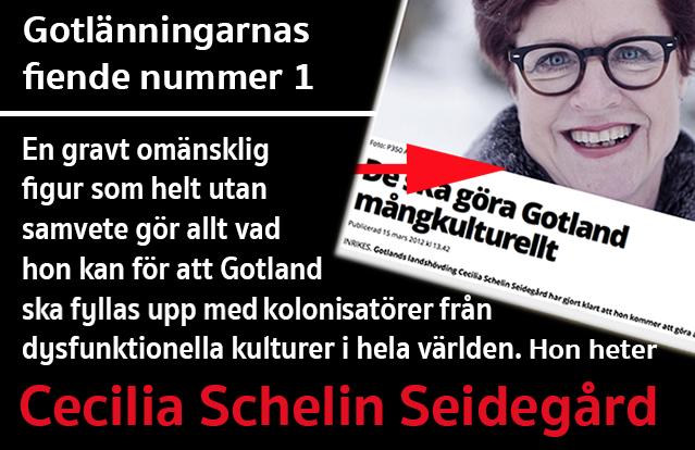 landhovding-cecilia-schelin-seidegard-gotland